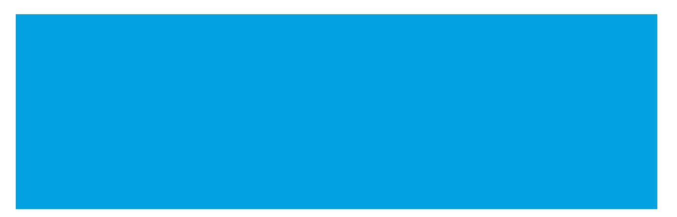 cal-chip-repair